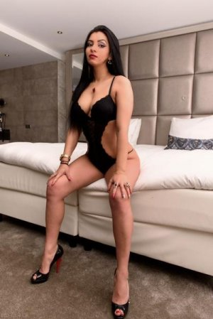 Tayra brunette escorts in Bideford